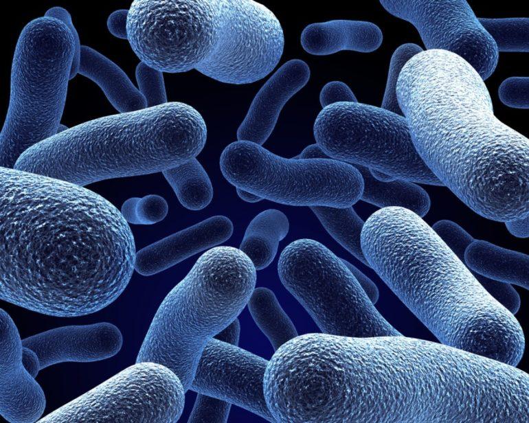 лактобактерин для грудничков